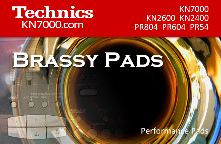 KN7000_BRASSY_PADS.png
